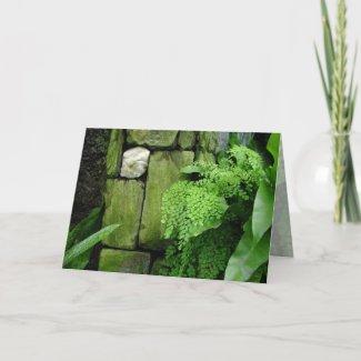 Stone Garden: Aristotle - Greeting Card card