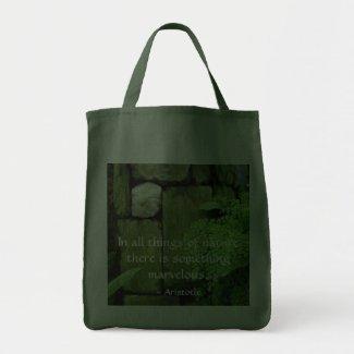 Stone Garden: Aristotle - Grocery Tote bag