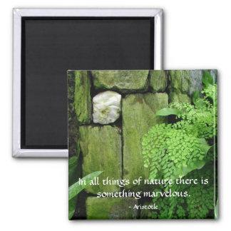 Stone Garden: Aristotle - Magnet #1