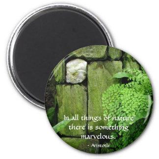 Stone Garden: Aristotle - Magnet #2