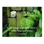 Stone Garden: Aristotle - Postcard