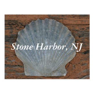 Stone Harbor Scallop Shell Postcard