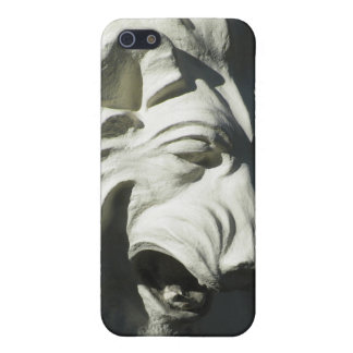 Stone Lion Head iPhone SE/5/5s Case