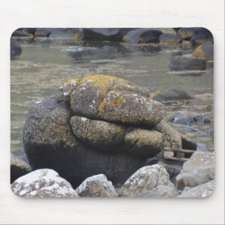 Stone Manatee at the Giant's Causeway Mousepad