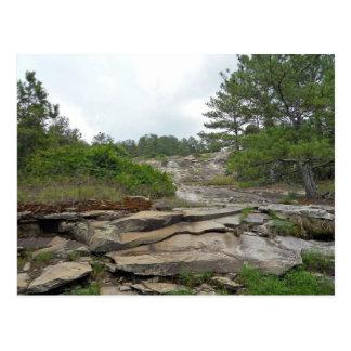 Stone Mountain, Georgia Postcard