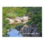 Stone Mountain Park Creek Stone Mountain GA 3 Post Cards
