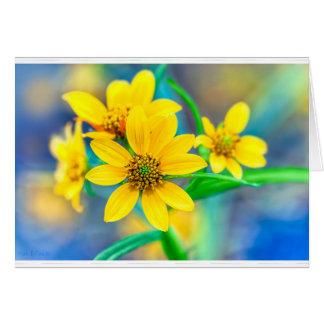 Stone Mountain Yellow Daisies Card