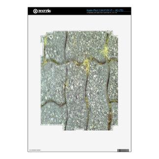 Stone Path iPad 3 Decal