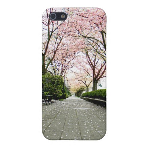 Stone Path iPhone SE/5/5s Cover