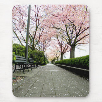 Stone Path Mouse Pad