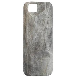 Stone Rock iPhone SE/5/5s Case