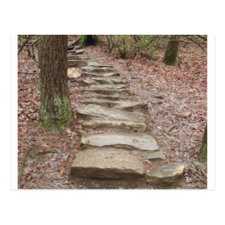 Stone Stair Path at Fall Creek Falls, TN Postcard