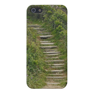 Stone Stairs iPhone Case