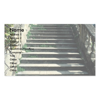 Stone stairway, Clivedon House, near Maidenhead, B Business Card Templates