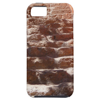 Stone Step Nature iPhone 5 Covers
