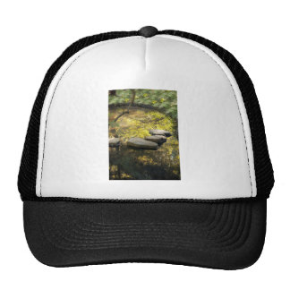 Stone Steps Across A Pond Trucker Hat