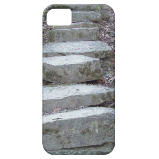 Stone Steps at Sugarcreek iPhone 5 Cases