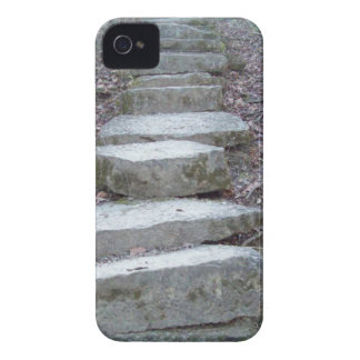 Stone Steps at Sugarcreek iPhone 4 Case-Mate Case