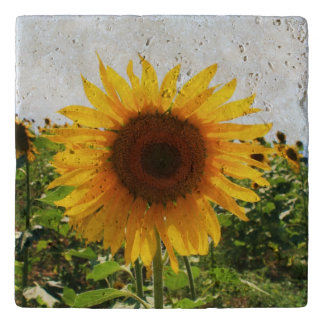 Stone Sunflower Trivet