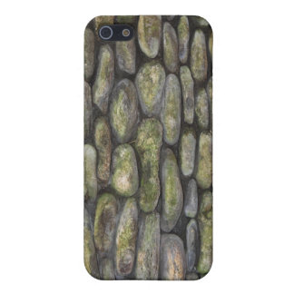 Stone Wall - case iPhone 5 Cover