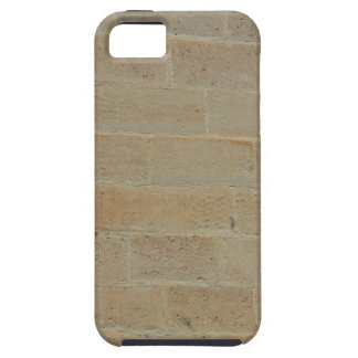 Stone Wall iPhone 5 Case