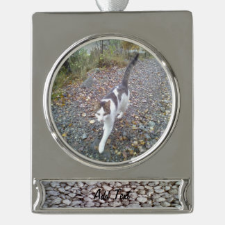 Stone wall silver plated banner ornament