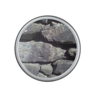 Stone Wall Speaker