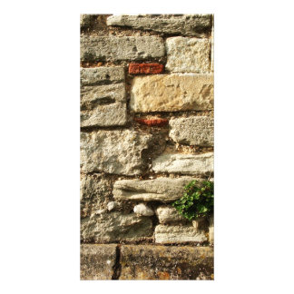 Stone Wall. With small plant. Card