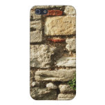 Stone Wall. With small plant. Covers For iPhone 5
