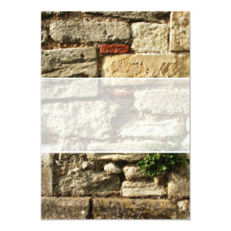 """Stone Wall. With small plant. 5"""" X 7"""" Invitation Card"""