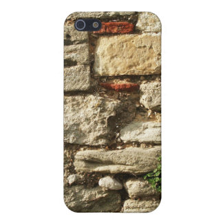 Stone Wall. With small plant. iPhone SE/5/5s Case