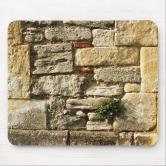 Stone Wall. With small plant. Mouse Pad