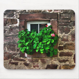 Stone Wall with Window Plants Mouse Pad