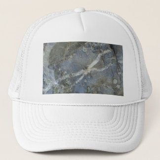 Stone with cross vein trucker hat