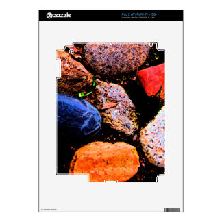 Stoned 2 skin for the iPad 2