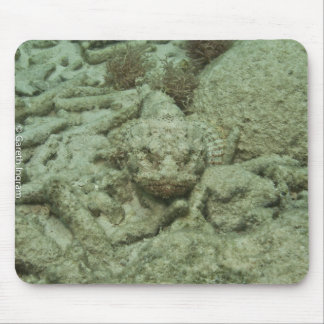 Stonefish in hiding mouse pad