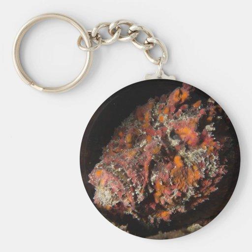 Stonefish Key Chain