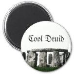 Stonehenge - Cool Druid Fridge Magnet