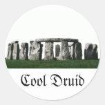 Stonehenge - druida fresco pegatinas redondas