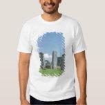 Stonehenge Remera