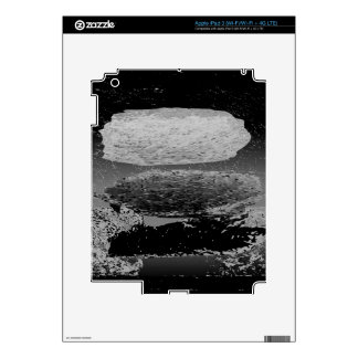 stones decal for iPad 3
