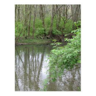 Stone's River Postcard
