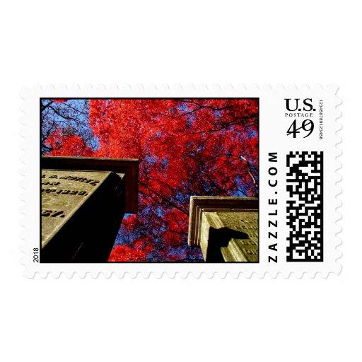 Stones & the Firetree Postage