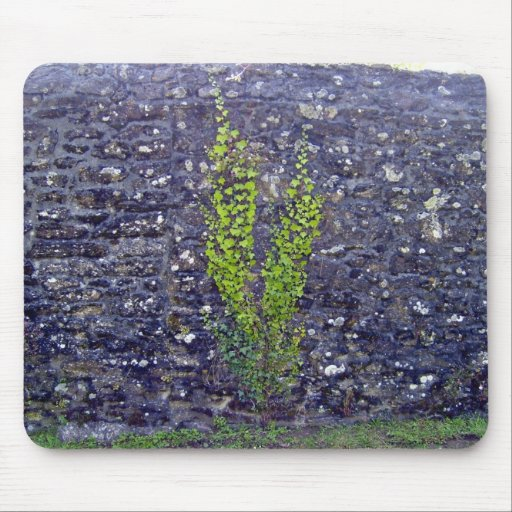 Stonewall with climbing plants mouse pad