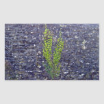 Stonewall with climbing plants rectangle stickers