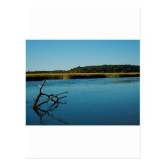Stony Brook, NY Postcard
