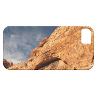Stony Contrast iPhone 5 Covers