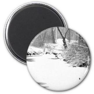 Stony Creek nevado Imán Redondo 5 Cm
