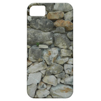 Stony phone case iPhone 5 cover
