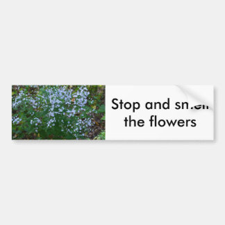 Stop and smell the flowers bumper sticker